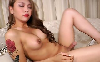 Latina Shemale give Chubby Confidential Plays Simply